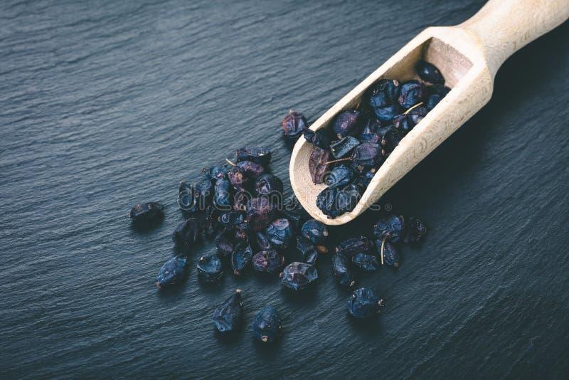 Torr barberry för krydda royaltyfria bilder