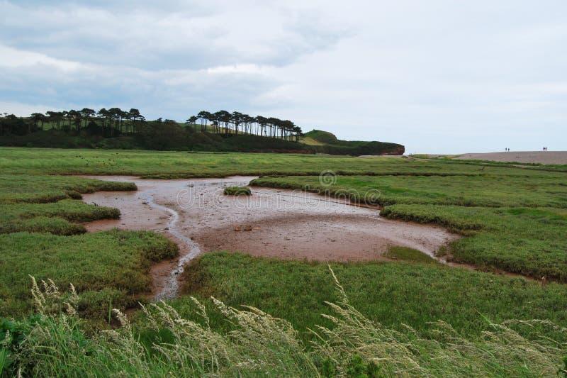 Torr flod i Devon royaltyfri fotografi