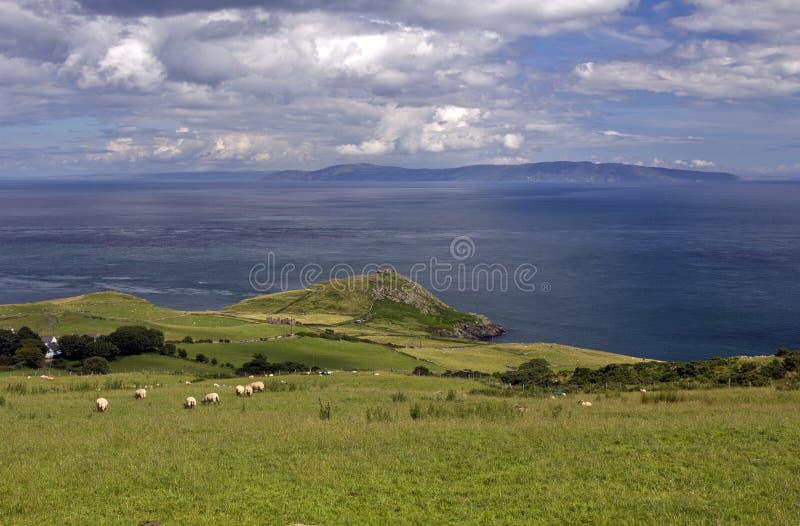Torr głowa przez morze rozmyślający Kintyre Szkocja i, Antrim wybrzeże zdjęcia stock