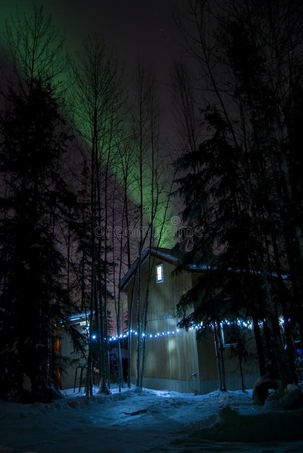 Torr kabin med nordliga lampor royaltyfri foto