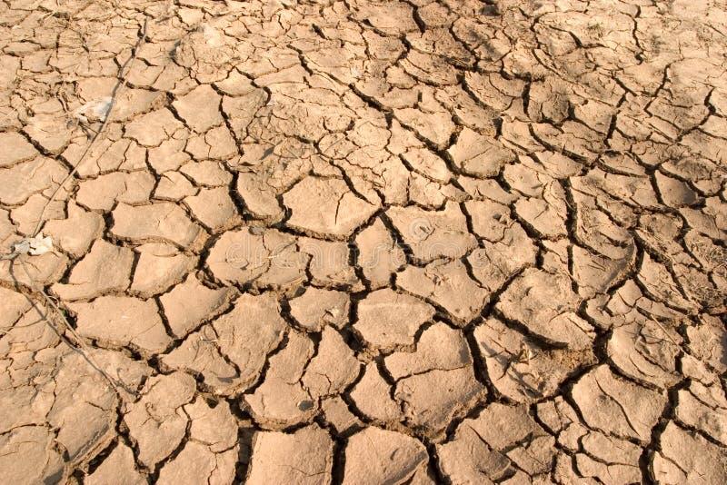 torr mud arkivfoton