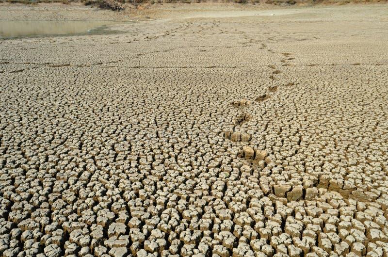 Torr och sprucken jord för torkaland i ointressant säsong arkivfoton