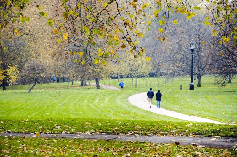 torr sommar för hyde bara london lång parkstorm fotografering för bildbyråer
