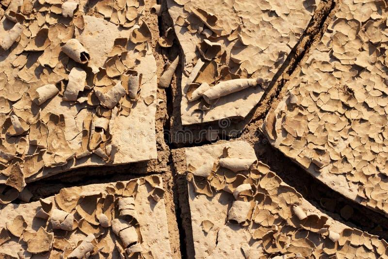 Torr sprucken jordtextur för detalj arkivfoton
