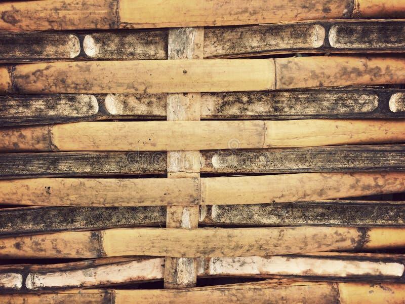 Torr vägg för bambutexturbakgrund med naturliga modeller för tappningtapet royaltyfria bilder