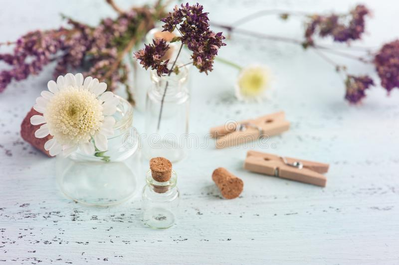Torra örter, blommor i små flaskor royaltyfria foton