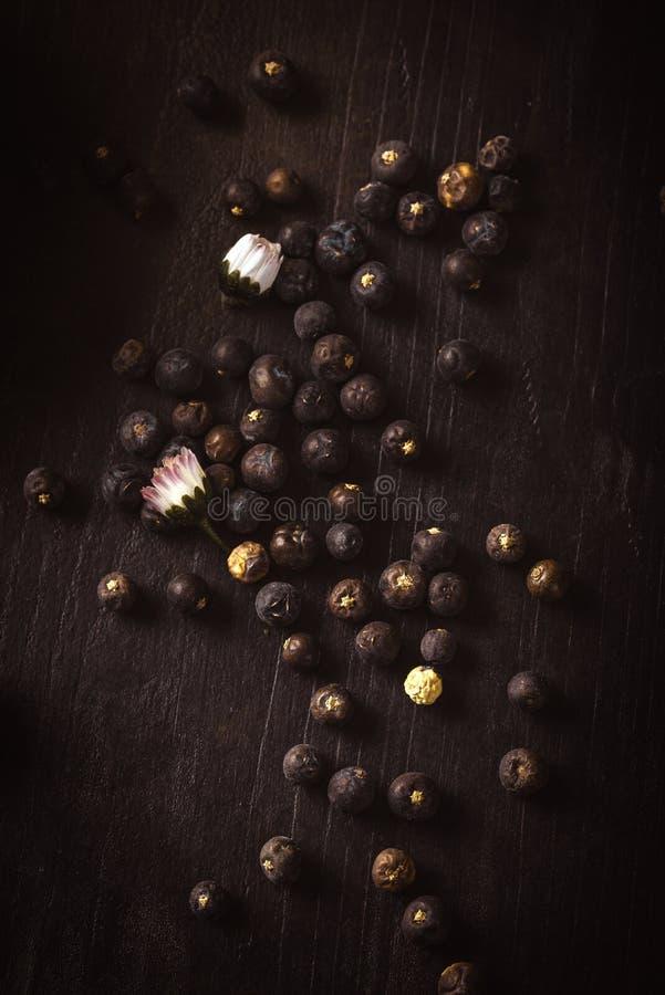 Torra enbär som spills på träbräde med tusenskönablom royaltyfri foto