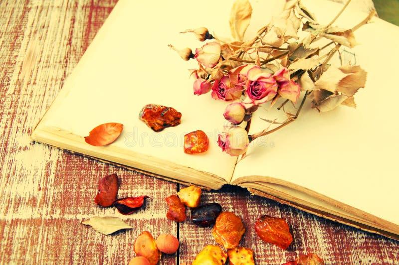 Torra rosor, bärnsten och de tomma öppnar boken fotografering för bildbyråer