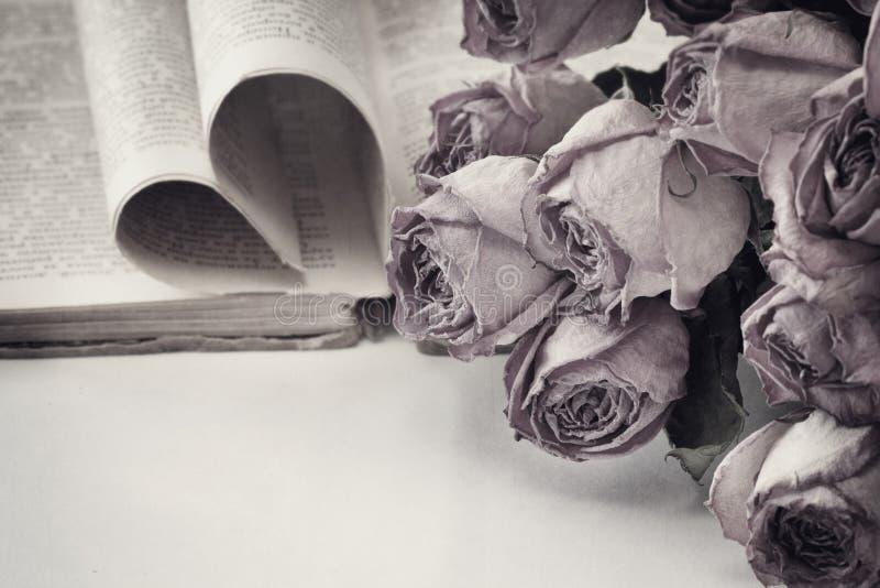 Torra rosor och en bok royaltyfri foto