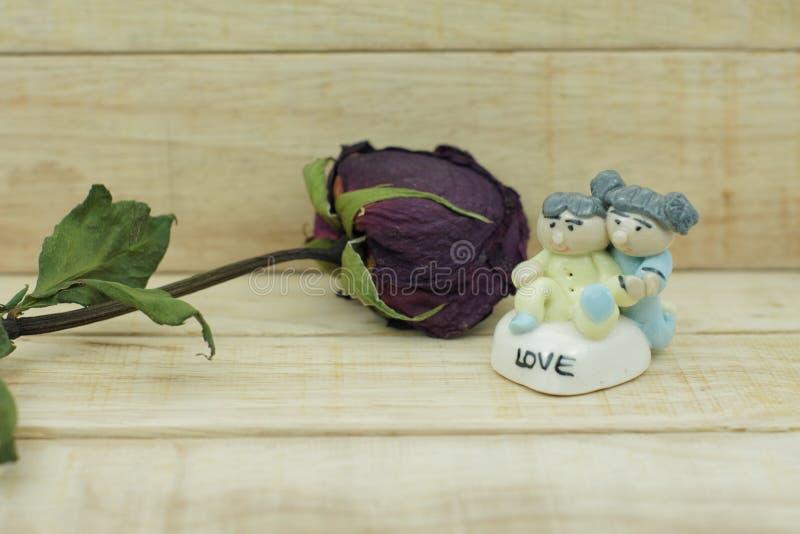 Torra rosor och keramisk docka på wood modellbakgrund arkivfoto