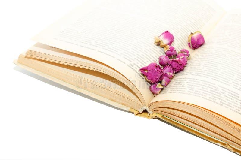 Torra rosor på sidaspridningar för gammal bok royaltyfri bild