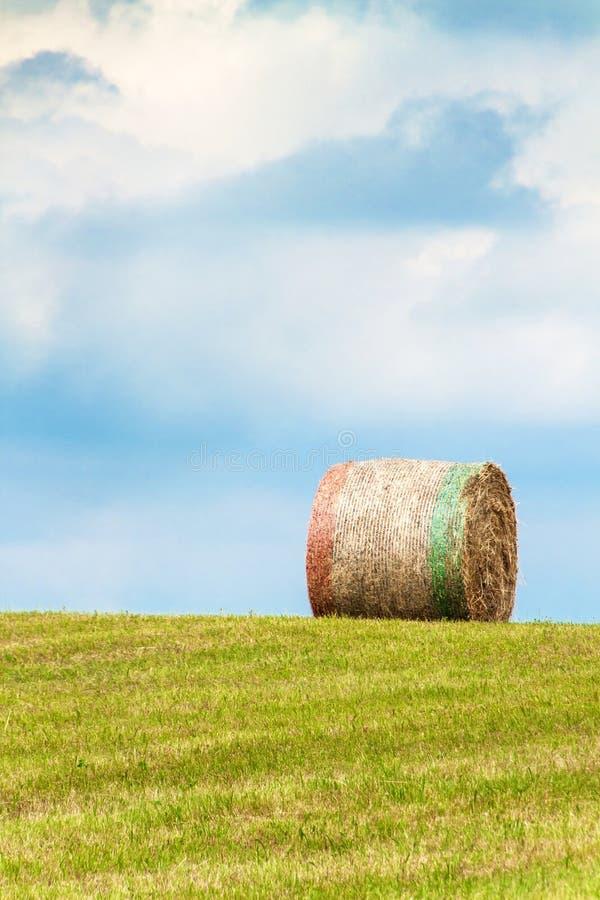 Torra sugrörbaler på mejad äng Sommaräng i Tjeckien Arbeta på en jordbruks- lantgård arkivfoton