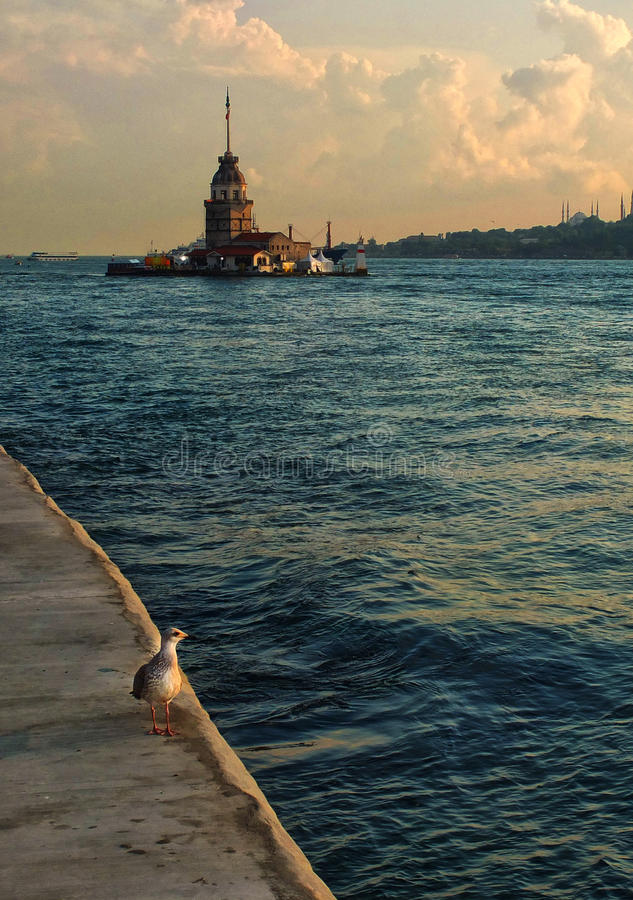 Torre da menina de Istambul fotos de stock