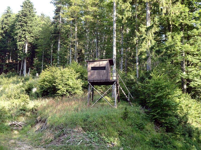 Torre da vigia para caçar, imagem de stock royalty free