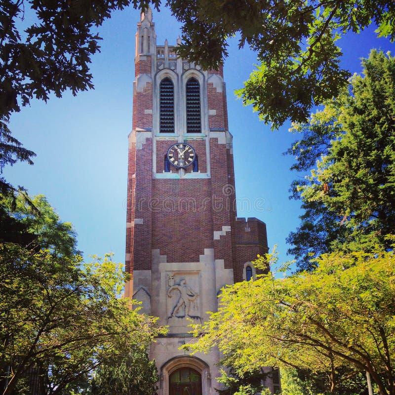Torre de Beaumont imagem de stock