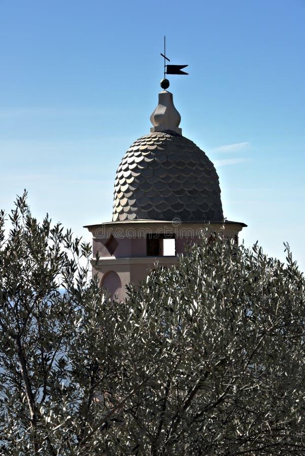 Torre de Bell entre oliveiras Uma igreja em Cinque Terre imergida em um bosque verde-oliva fotografia de stock
