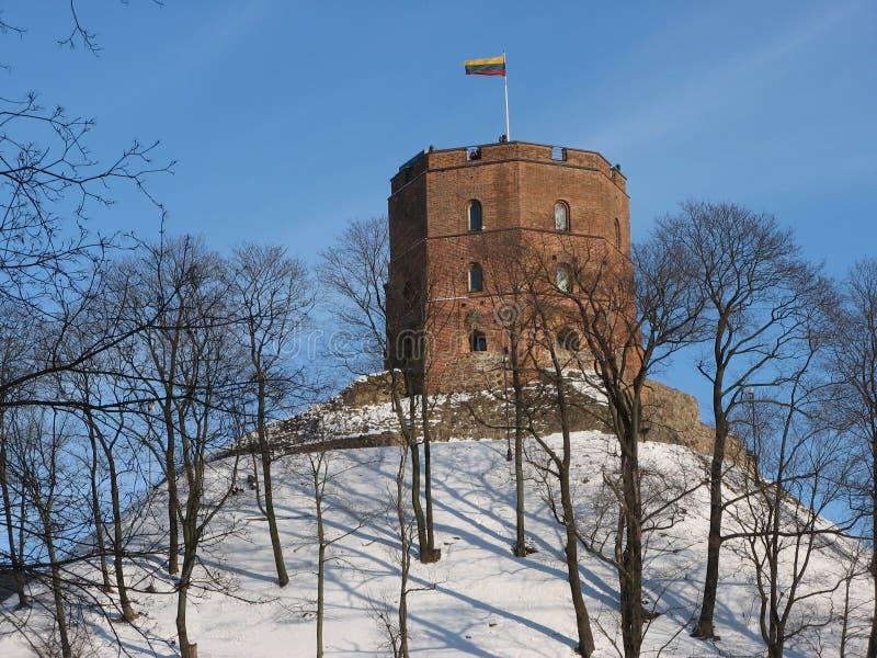 Torre de Gediminas fotografia de stock