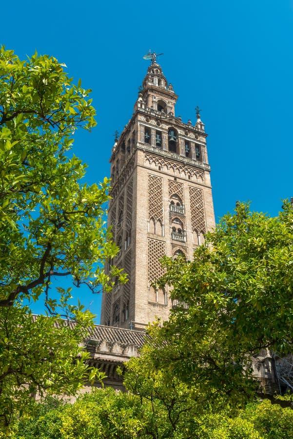Torre de Giralda de la catedral de Sevilla del Alcazar fotos de archivo