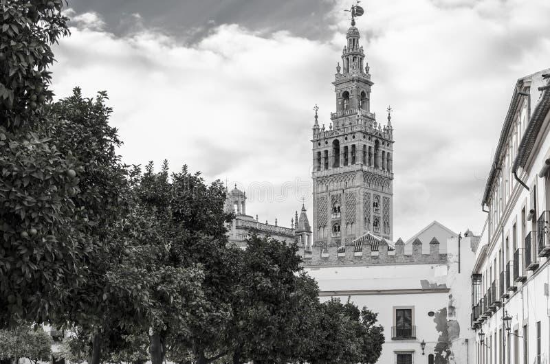 A torre de Giralda em preto e branco fotos de stock