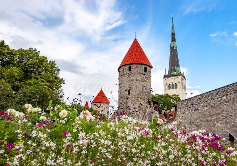 Torre de iglesia del St Olaf's y paredes de Tallinn vieja, Estonia fotografía de archivo