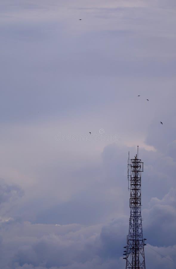 Torre de la telecomunicación contra la igualación del cielo nublado con muchos pájaros de vuelo fotos de archivo libres de regalías