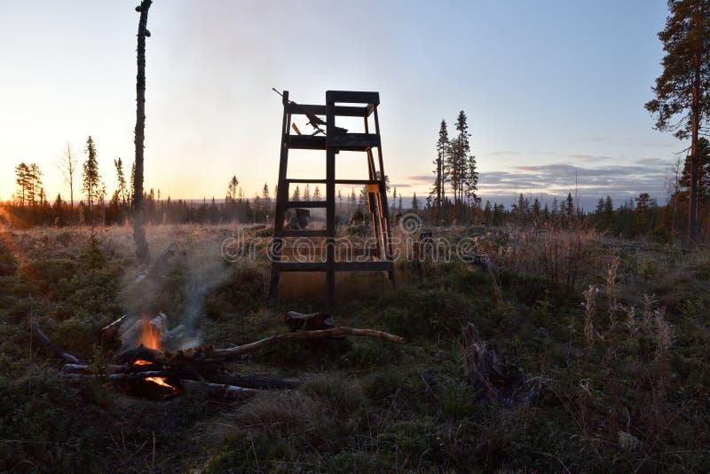 Torre de madeira usada para a caça dos alces na manhã lite imagens de stock