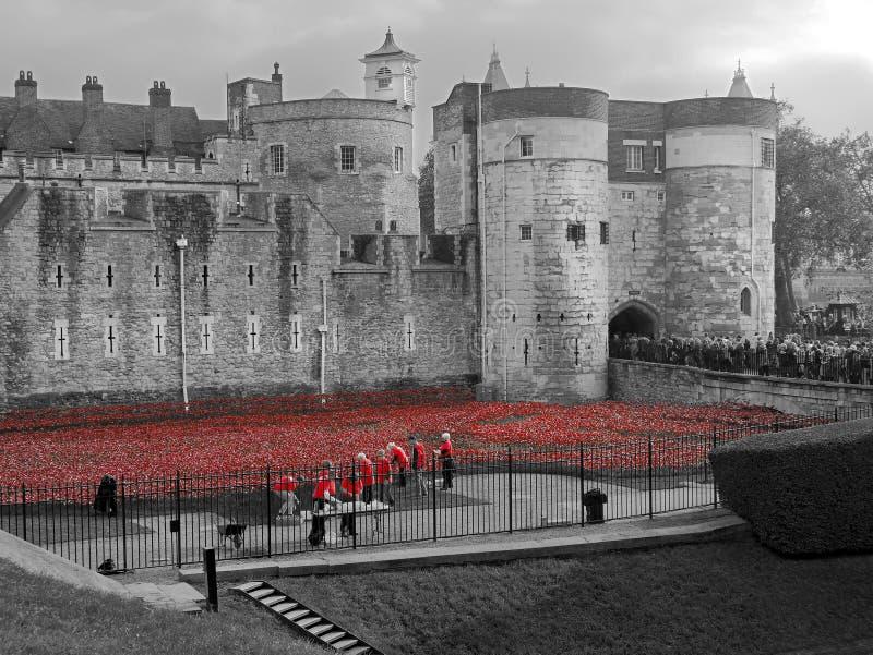Torre de papoilas e de voluntários de Londres fotos de stock royalty free
