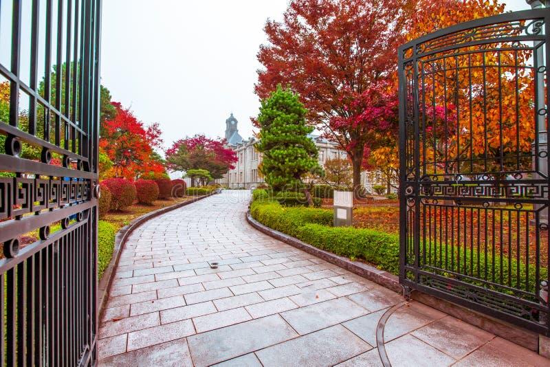 A torre de pulso de disparo antiga no telhado da construção velha tem céus vermelhos das folhas, os alaranjados e os azuis outono imagem de stock