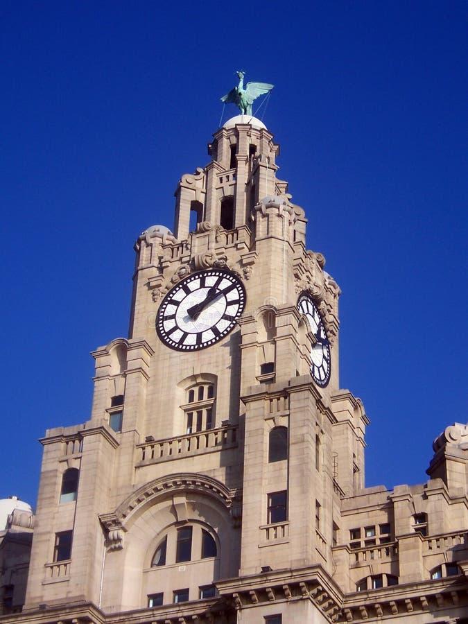 Torre de reloj del edificio del hígado imagen de archivo libre de regalías