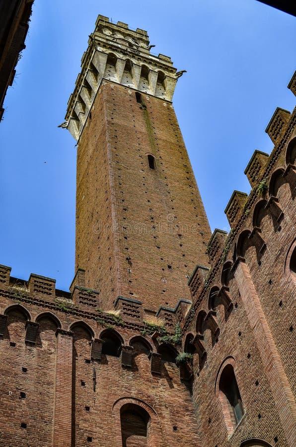 Torre de sino de Florença foto de stock