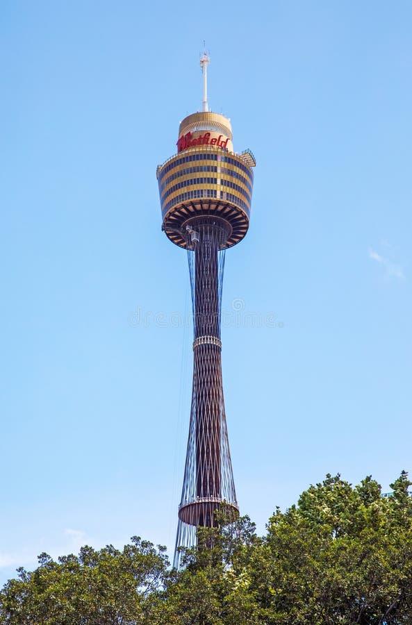 Torre de Sydney no céu azul fotos de stock