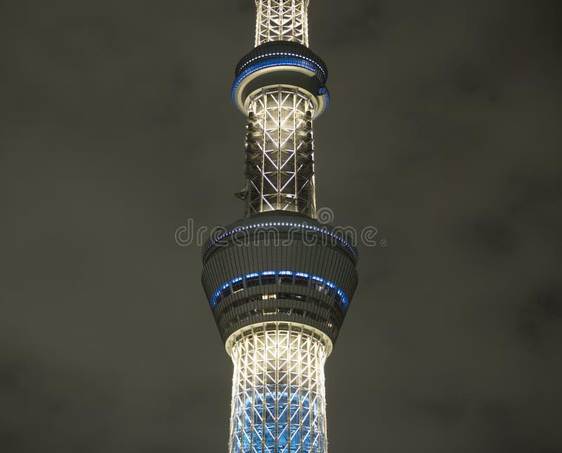 Torre de Tokio del árbol del cielo en la noche fotos de archivo