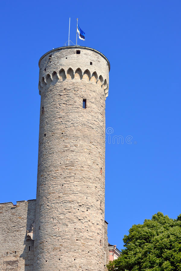 Torre de Toompea imagem de stock