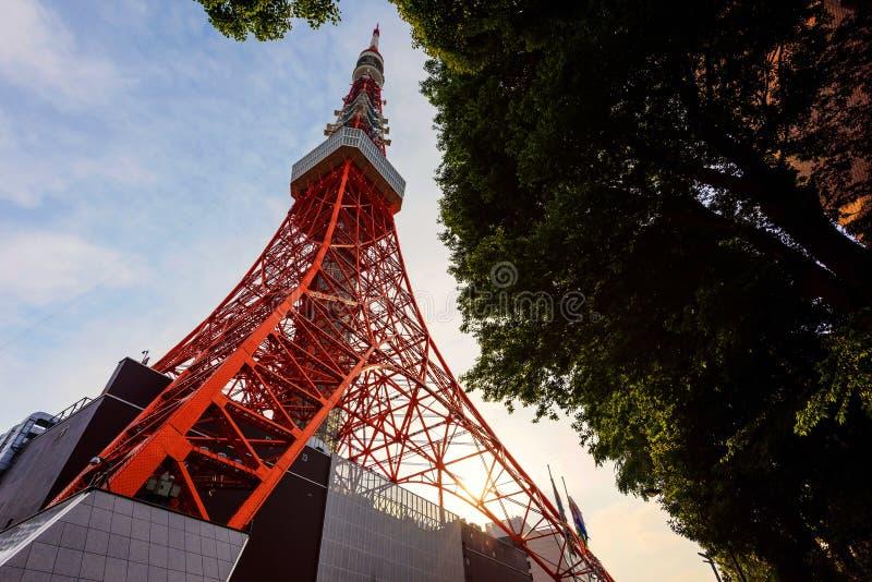 Torre de Toyko en la puesta del sol fotos de archivo libres de regalías