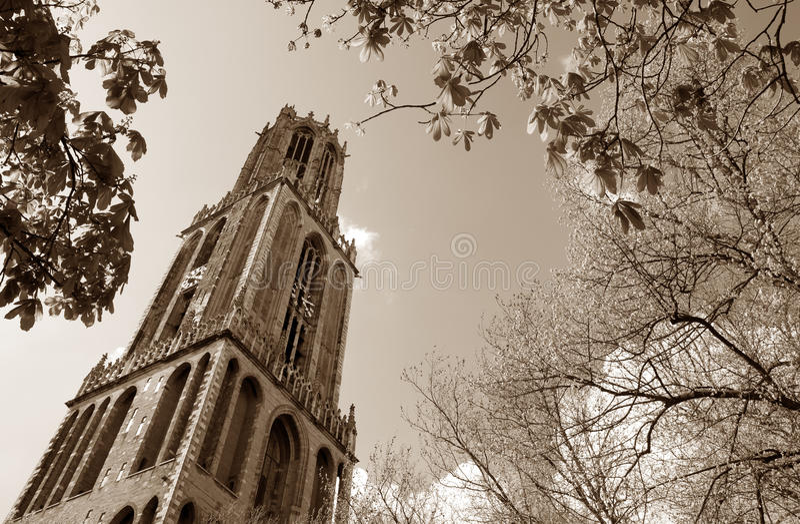 Torre dei DOM, Utrecht fotografia stock libera da diritti