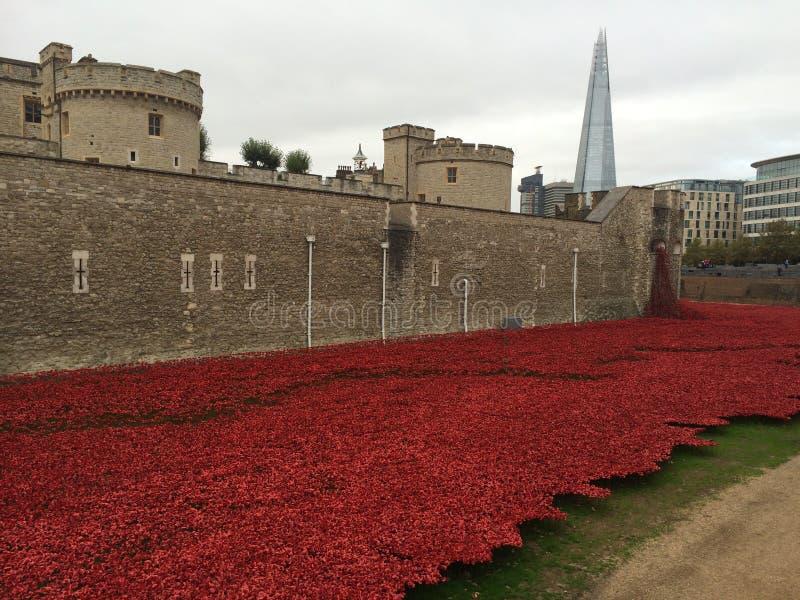 Torre dei papaveri di Londra fotografie stock libere da diritti