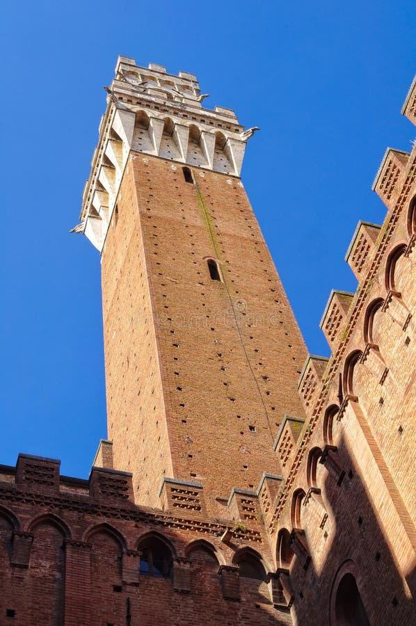 Torre del Mangia dal cortile 1 - Siena immagini stock libere da diritti