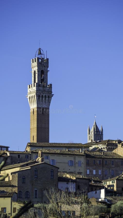 Torre del Mangia, Siena stock photo