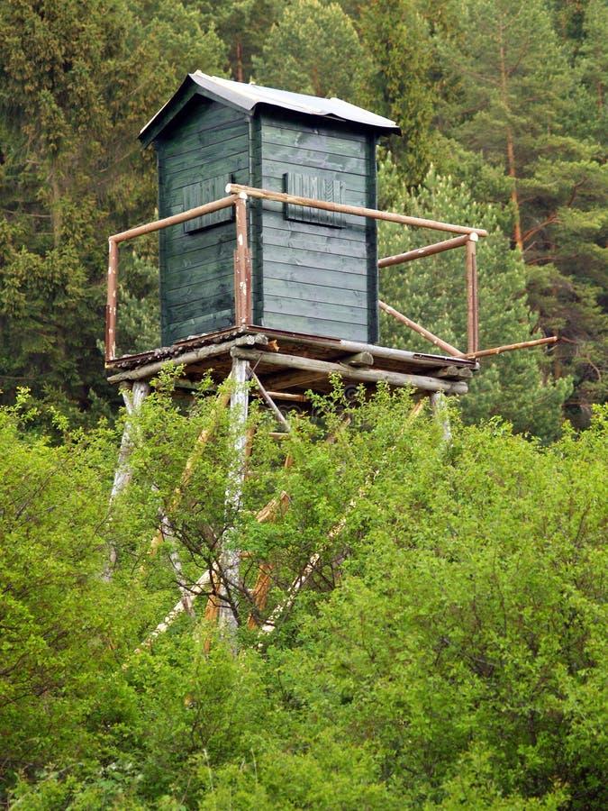 Torre del reloj en bosque profundo fotografía de archivo