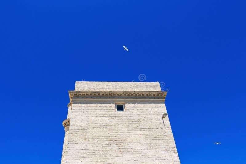 Torre Del Sagrario w Cadiz, Andalusia, Hiszpania obrazy royalty free