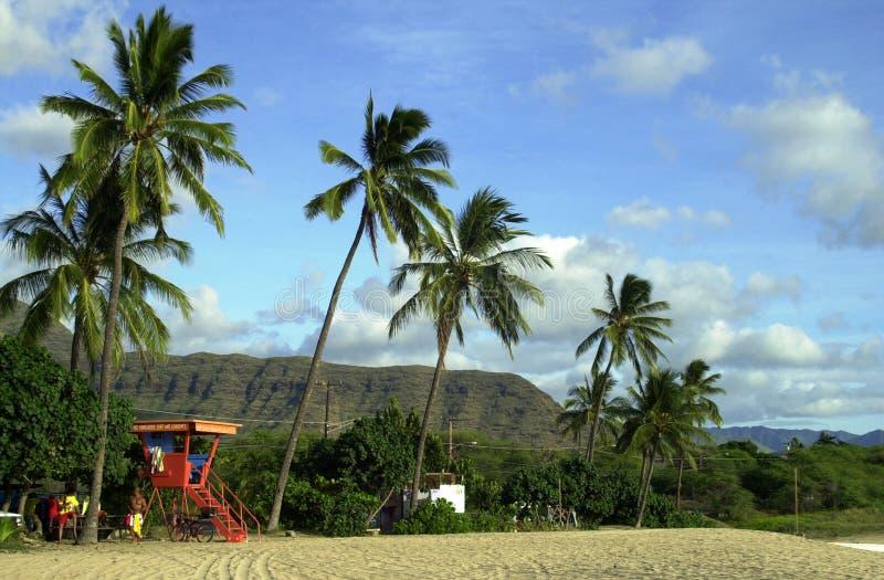 Torre del salvavidas en la playa de Hawaii foto de archivo libre de regalías