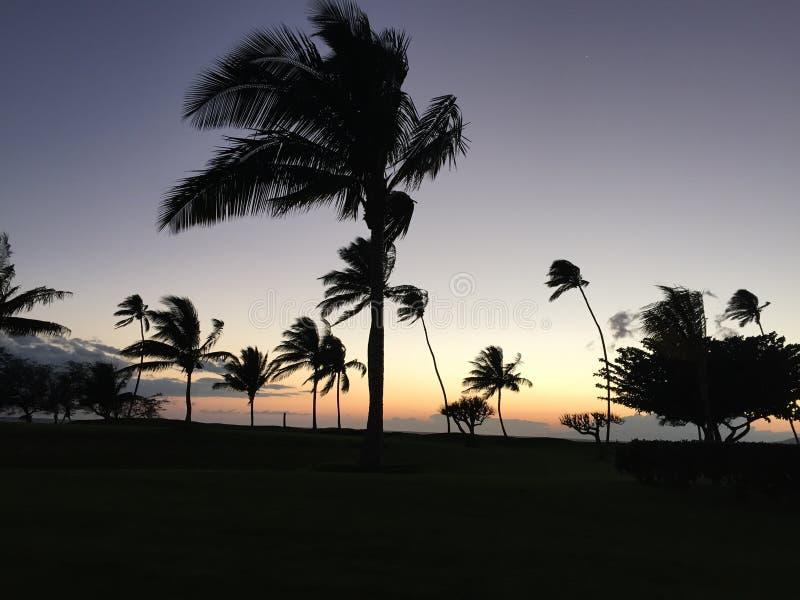 Torre del salvavidas en la puesta del sol foto de archivo