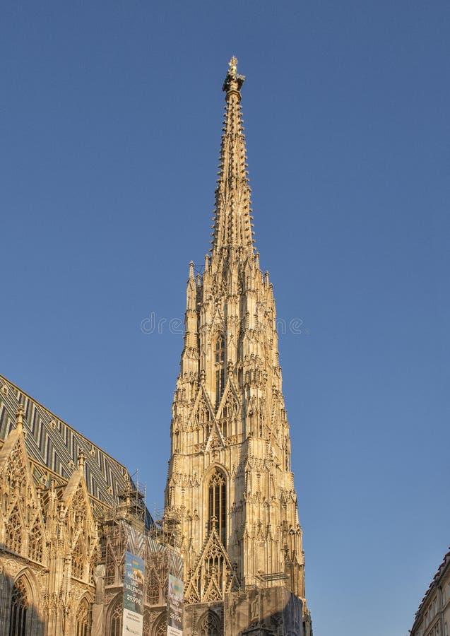 Torre del sud, la cattedrale di Santo Stefano, Vienna, Austria immagini stock libere da diritti
