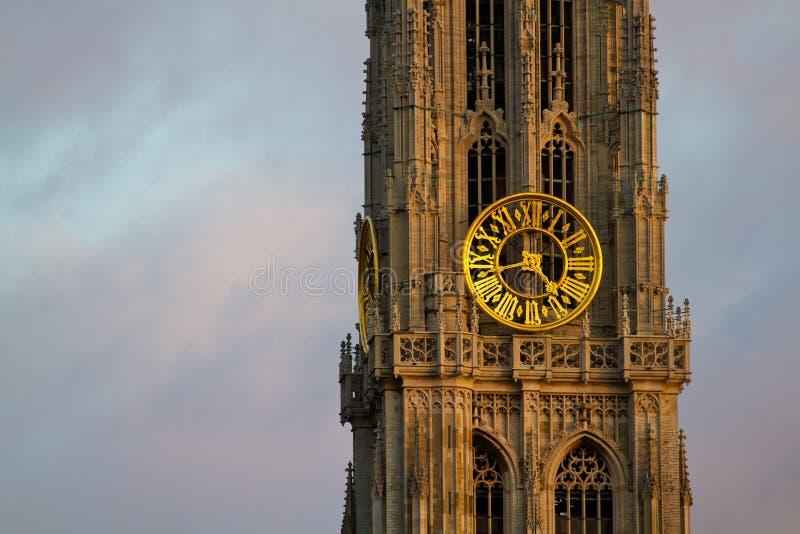 Torre della nostra signora Church a Anversa fotografia stock