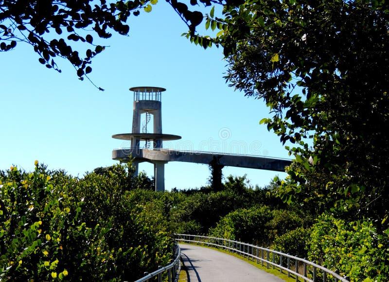 Torre della valle dello squalo nei terreni paludosi fotografia stock libera da diritti