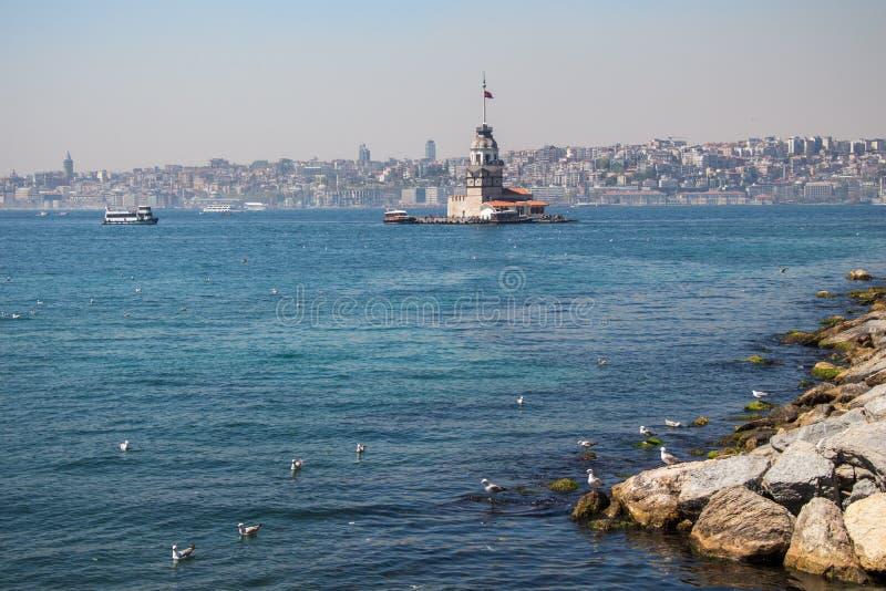 Torre delle ragazze e dei gabbiani a Costantinopoli fotografia stock libera da diritti