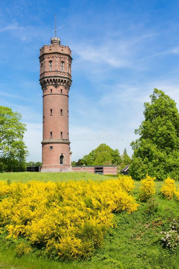 Torre di acqua di pietra olandese con i fiori gialli di fioritura fotografie stock