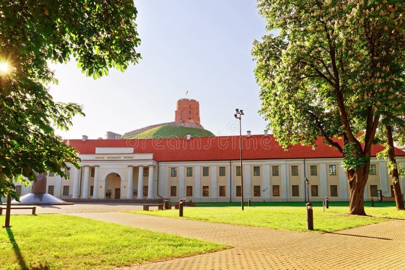 Torre di Gediminas e museo nazionale della Lituania immagini stock libere da diritti