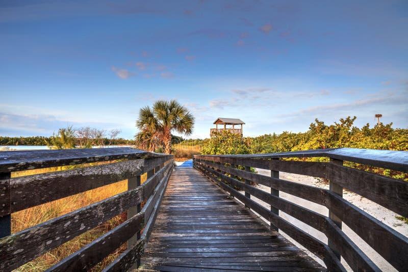 Torre di osservazione dell'uccello all'estremità di un sentiero costiero ad alba sulla spiaggia di Tigertail, Marco Island fotografia stock libera da diritti