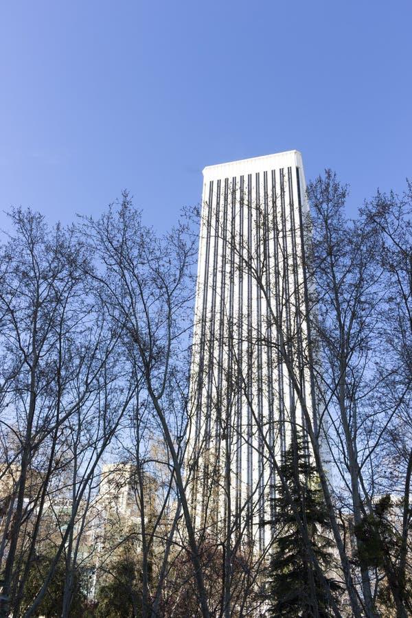 Torre di Picasso situata nel distretto finanziario di Madrid immagine stock
